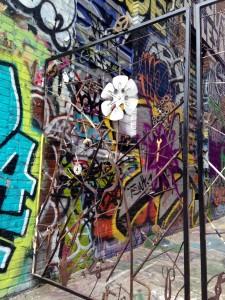 baltimore street art - graffiti alley metal gate
